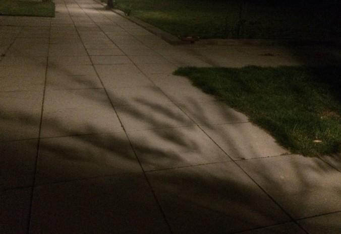 nattskuggor